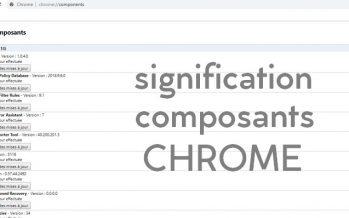 Liste des composants de chrome et leur signification (2019)