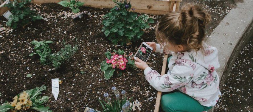 10 meilleures applications de jardinage pour Android et iOS